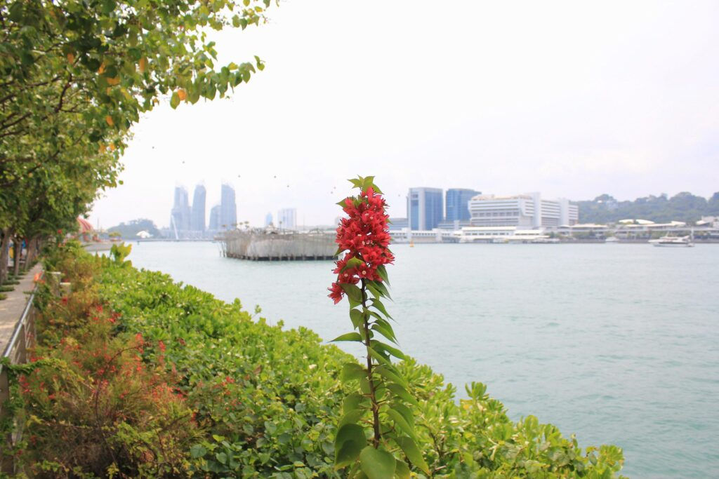 Green Spaces Singapore