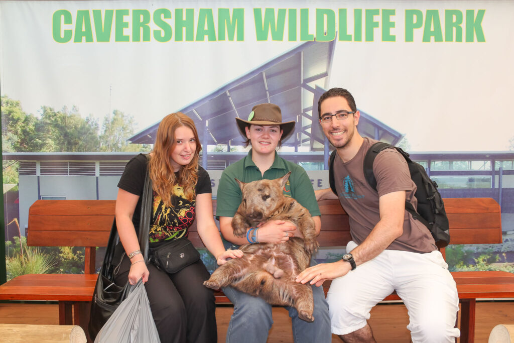 Hanging out with a Wombat at Caversham Wildlife Park