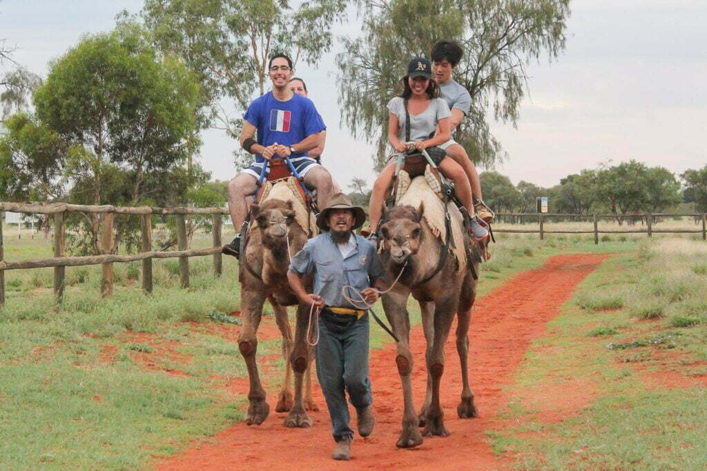 Riding a Camel at Alice Springs Camel Farm Northern Territory Australia